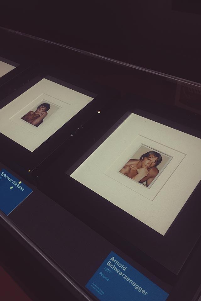 Andy Warhol, Mostra Vittoriano Roma